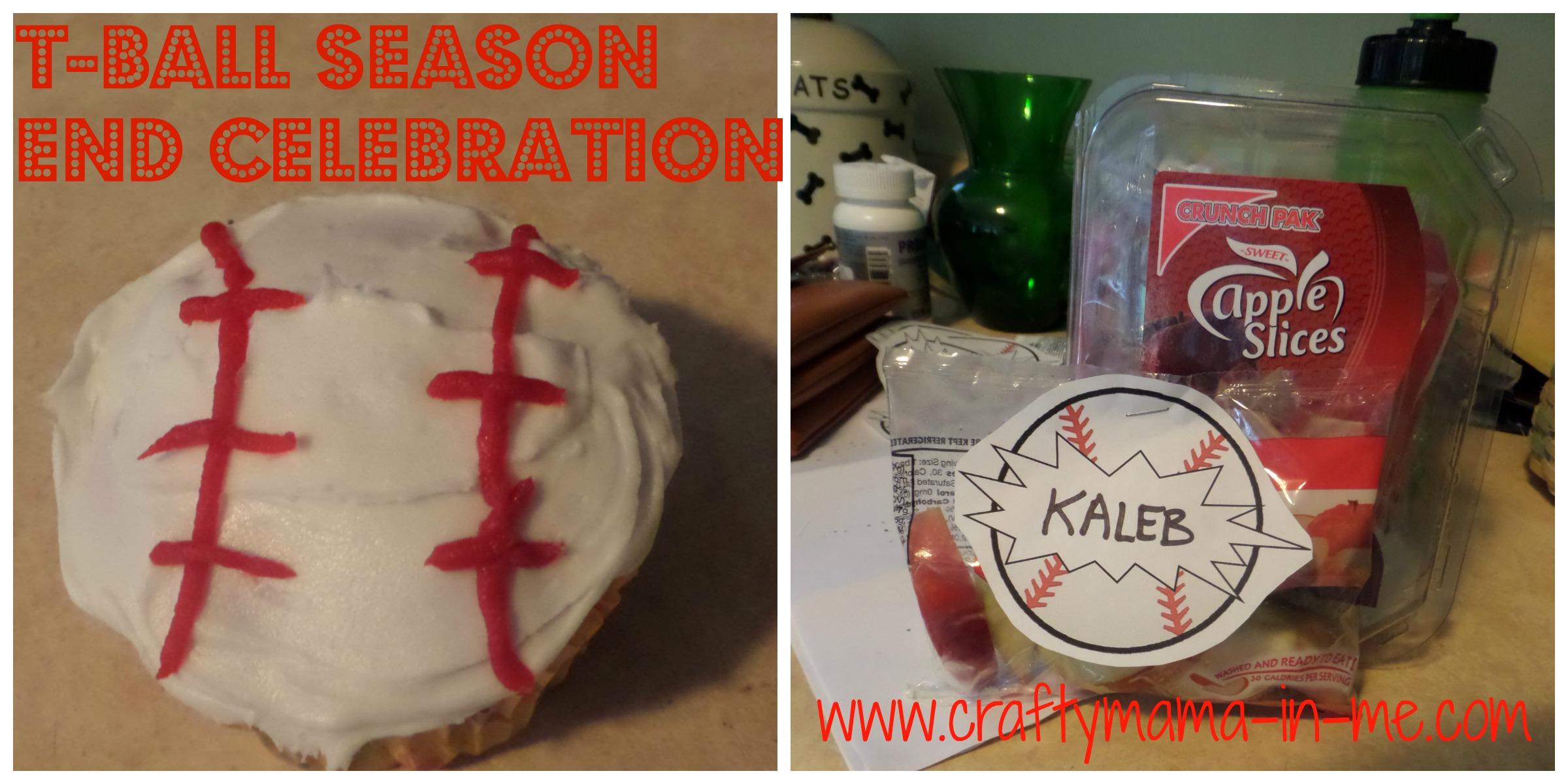 T-Ball Season End Celebration