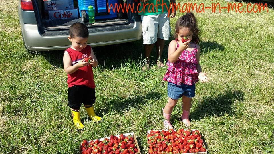 Summer Activities for kids in the Bangor Area