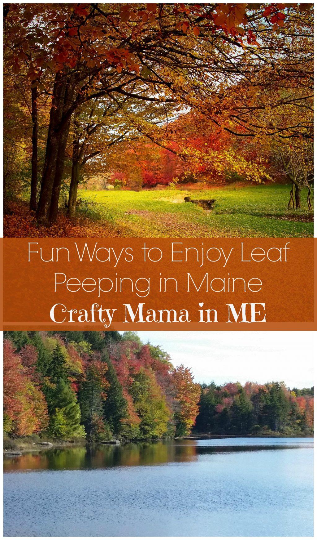 Fun Ways to Enjoy Leaf Peeping in Maine