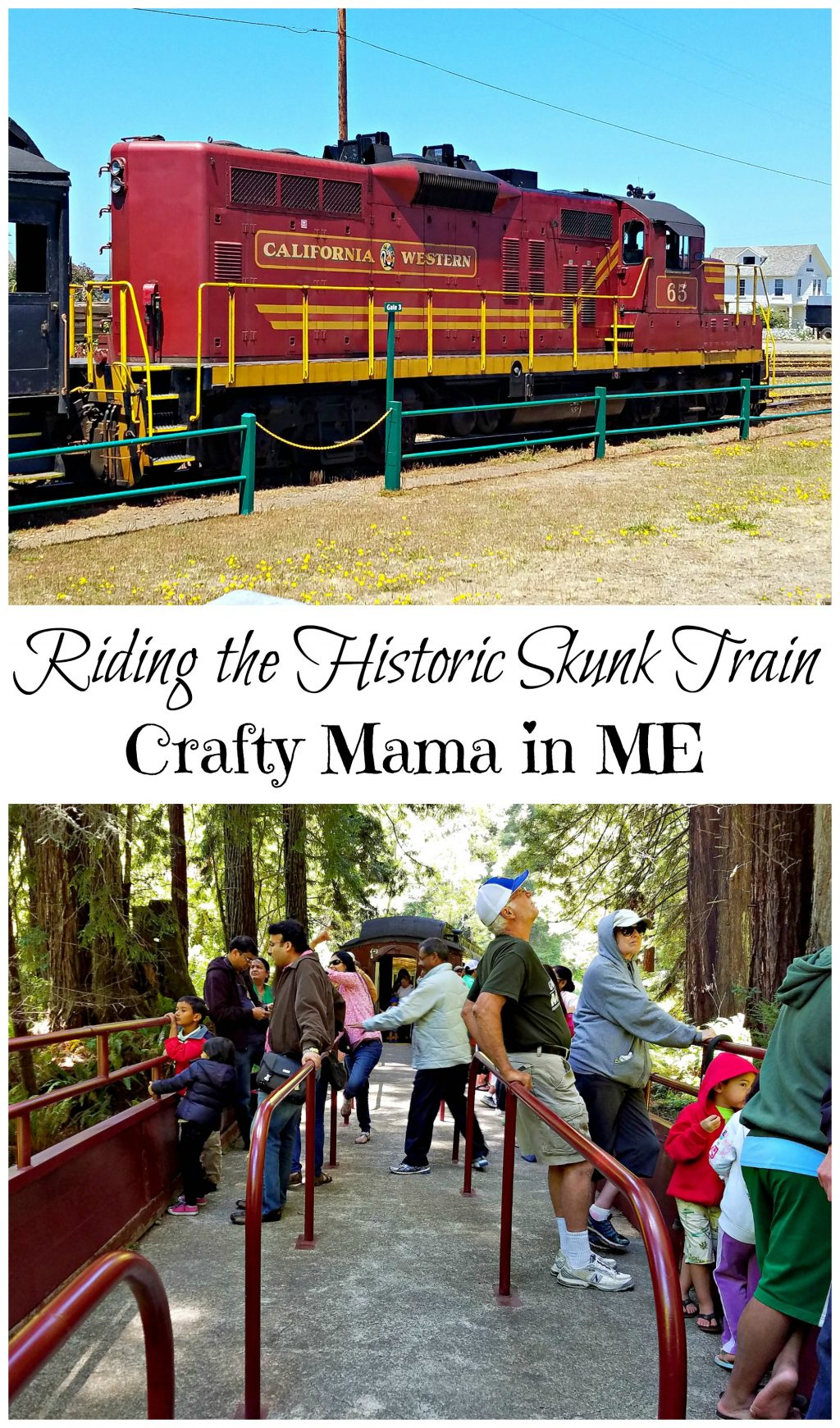 Riding the Historic Skunk Train