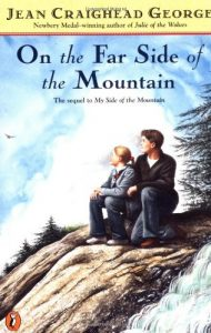 Adventurous Mountain Books your Tween will Love