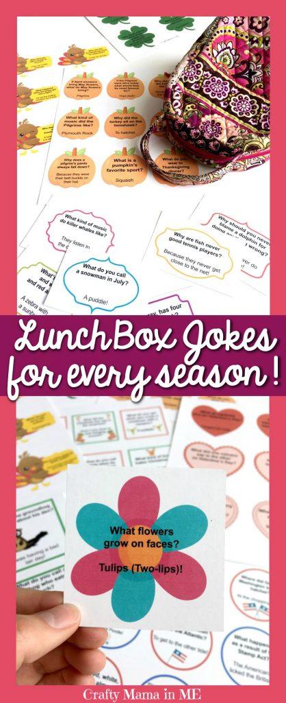 Lunch Box Jokes for Every Season